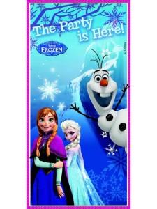 frozen_door_banner_2