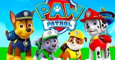 Paw Patrol fødselsdag