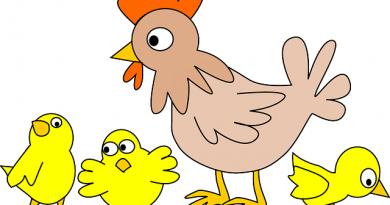 Alle mine kyllinger kom hjem børnefødeselsdag børnelege