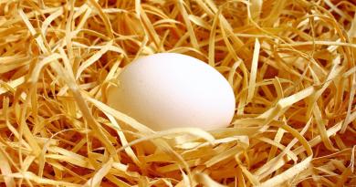 ægge løb
