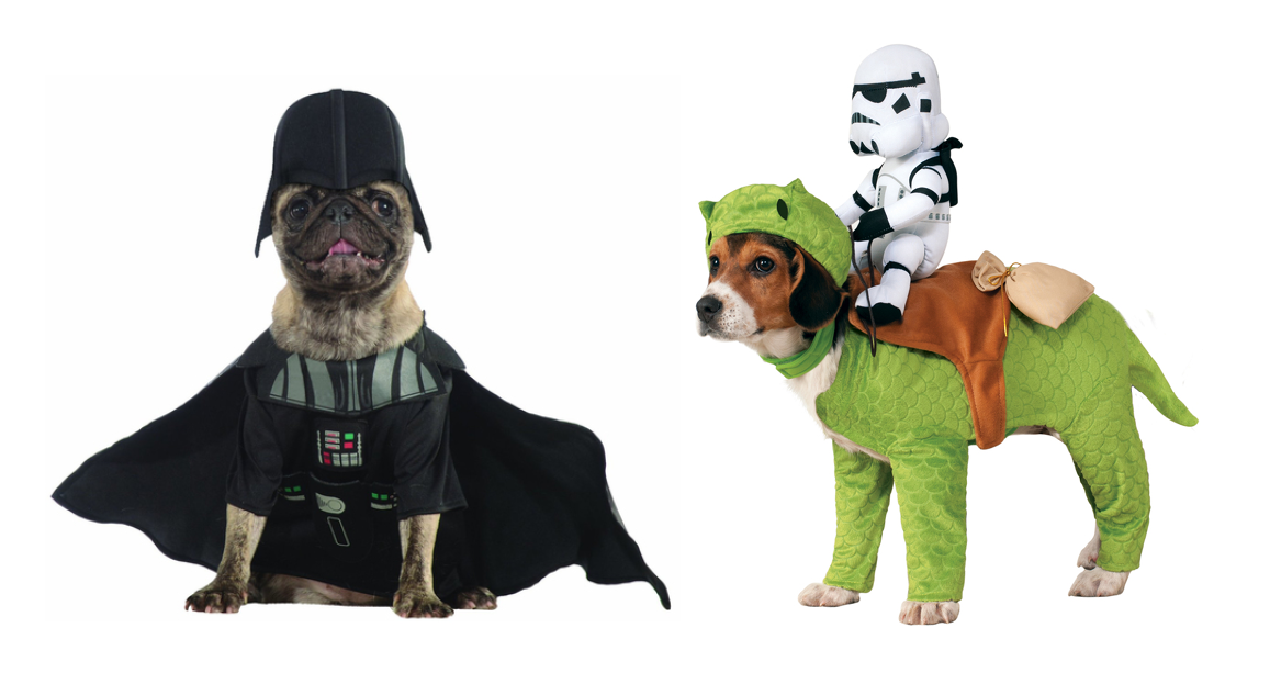 star wars f dselsdag kostume hund alletiders dag. Black Bedroom Furniture Sets. Home Design Ideas