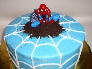 kage-spiderman