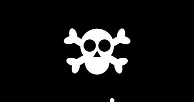 pirat fødselsdag pirat tema til børnefødselsdag