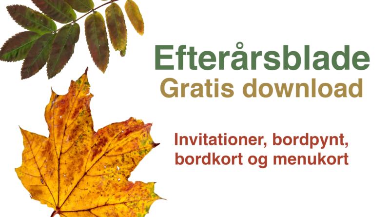 Fødselsdags bordpynt: Efterårsblade