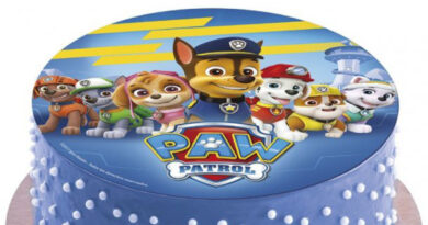 paw patrol kagepynt, paw patrol kage, paw patrol kageprint, paw patrol sukkerprint, paw patrol kagelys, paw patrol fødselsdag, paw patrol temafest, paw patrol børnefødselsdag, paw patrol festartikler, skye fødselsdag, skye kage, chase kage, alletiderdag, inspiration til børnefødselsdag, alletiders dag, paw patrol skye fødselsdagsfest skye fødselsdagstema paw patrule skye fødselsdag